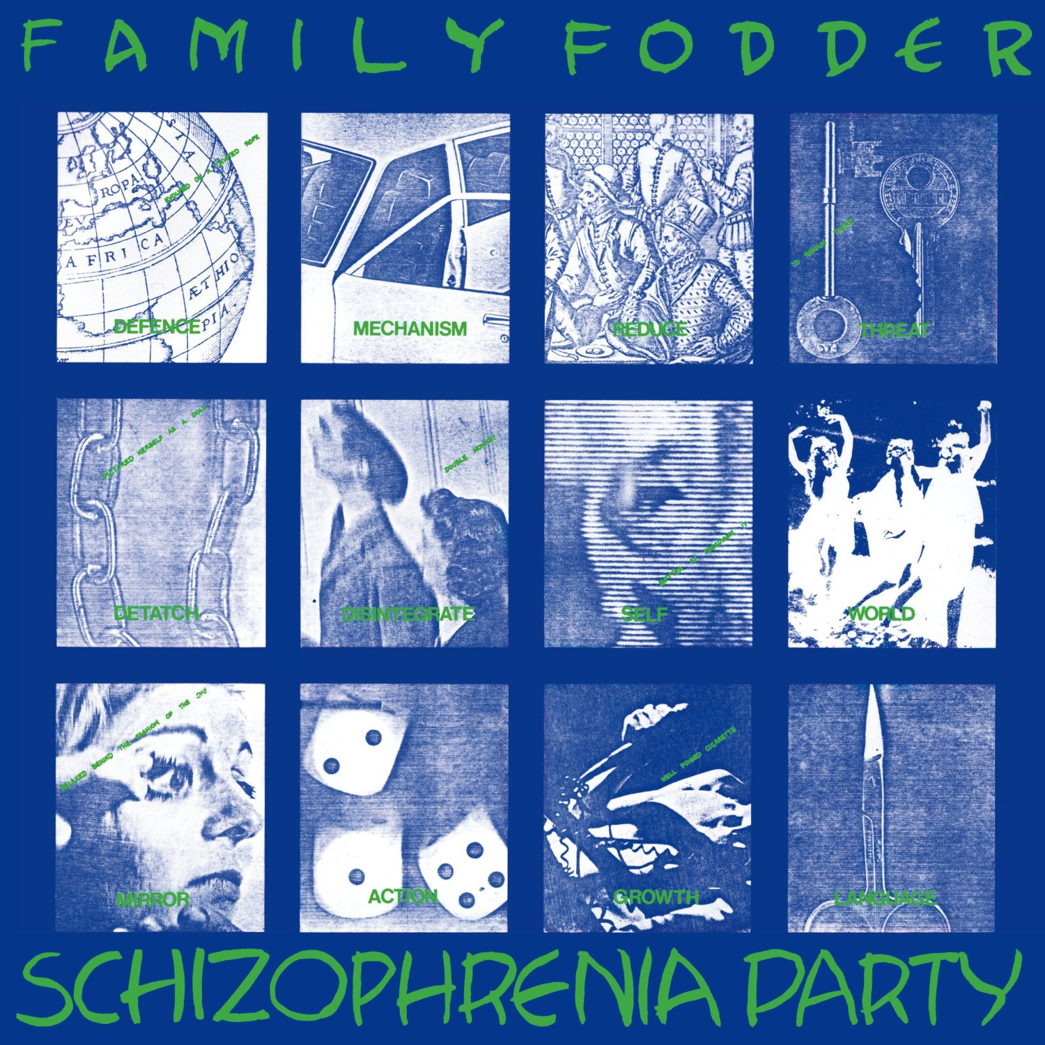 Schizophrenia Party (Director's Cut) / Family Fodderのジャケット