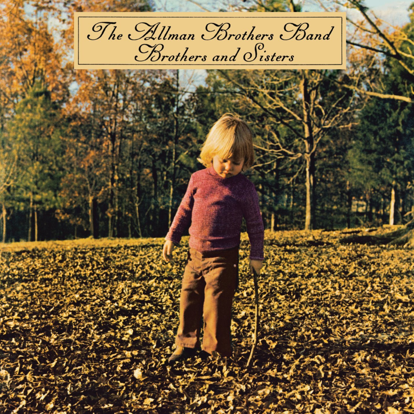 Brothers & Sisters / The allman brothers bandのジャケット